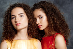 Beautiful sisters twins looking at camera over grey background. Stock Photography