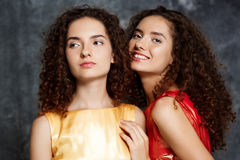 Beautiful sisters twins posing smiling over grey background. Stock Image