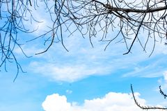 Beautiful sky and clouds royalty free stock photos