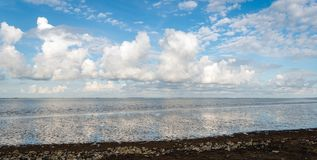 Cumulus clouds above a Dutch estuary. Beautiful sky with cumulus clouds reflected in the water surface of the Oosterschelde estuary. The photo was taken on a Royalty Free Stock Photos