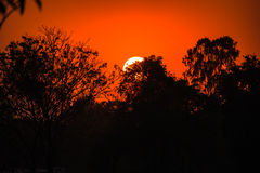 Beautiful sky fiery orange sunset Royalty Free Stock Photo