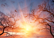 Beautiful Sky In The Evening Royalty Free Stock Photo