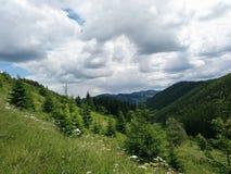 Beautiful   sky mountain trees stock photography