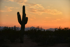 Beautiful sky over the desert in Arizona with a silhouette of a Royalty Free Stock Images