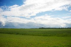 Beautiful sky over green meadow Royalty Free Stock Image