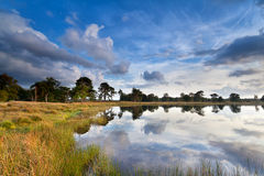 Beautiful sky reflected in lake Royalty Free Stock Images