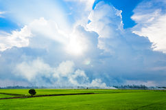 Beautiful of sky. Royalty Free Stock Photography