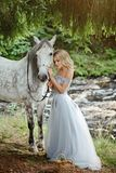Beautiful slender blond girl in dress hugging a gray horse, outd stock images