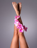 Beautiful slender female legs with flower Royalty Free Stock Images