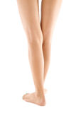 Beautiful slender female legs on a white background Royalty Free Stock Photography