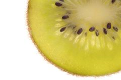 Beautiful slice of fresh juicy kiwi Stock Images