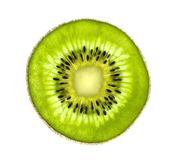 Beautiful slice of fresh juicy kiwi isolated on white Royalty Free Stock Image