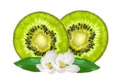 Beautiful slices of fresh juicy kiwi and white flowes isolated Royalty Free Stock Photo
