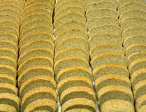 slices of special bread made of rye flour and protein Stock Images