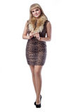 Beautiful slim blond woman in a leopard print dress. Isolated. Beautiful slim blond woman in a leopard print dress with a fur collar. Portrait in full growth stock image