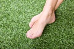 Beautiful slim female feet on green grass Stock Image