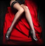 Beautiful slim legs in nylons Stock Images