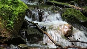 Beautiful small brook stock video footage