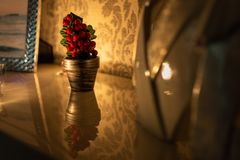 Beautiful and small Christmas tree on a reflective surface stock photos