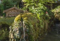 Beautiful small garden Stock Image