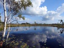 Beautiful small lake in Aukstumalos swamp, Lithuania Stock Photo