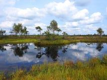 Beautiful small lake in Aukstumalos swamp, Lithuania Stock Photos