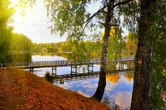 Beautiful small river  landscape Royalty Free Stock Photography