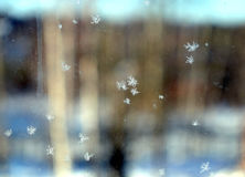 Beautiful small snowflakes on frozen window glass Royalty Free Stock Photo