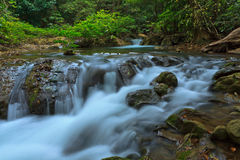 Beautiful small waterfall Stock Images