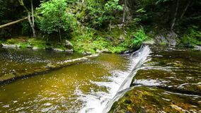 Beautiful small waterfall in forest stream. In South Czech. Green nature, summertime. Sun lights on water surface and in trees. Rocks in water, nice waves stock footage