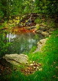 Beautiful Small Waterfall Oasis in a Lush, Green Forest Stock Image