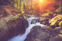 Beautiful small waterfall and rapids on a mountains river in sunlight. Stock Images