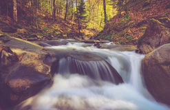 Beautiful small waterfall and rapids on a mountains river in sunlight. Royalty Free Stock Photography