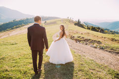 Beautiful smiling bride and groom walking back on meadow with mountain background Stock Images