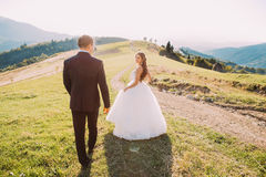 Beautiful smiling bride and groom walking back on meadow with mountain background Royalty Free Stock Photo