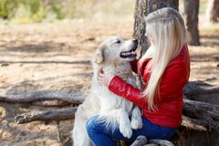 Beautiful smiling dog walking with owner outdoors. Pet concept. Royalty Free Stock Photography