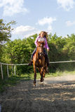 Beautiful smiling girl riding a  purebred horse Royalty Free Stock Photography