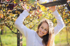 Beautiful smiling girl in a vineyard Stock Images