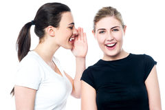 Beautiful smiling girls sharing a secret Stock Photography