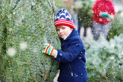 Beautiful smiling little boy holding christmas tree Stock Images