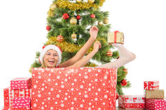 Beautiful  smiling woman and the Christmas tree. Stock Photos