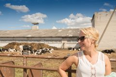 Beautiful smiling woman and cows on a backgroung.  Stock Images