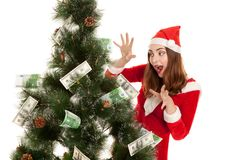 Beautiful smiling woman with money fir tree. Beautiful smiling woman in christmas costume with money fir tree isolated on white Royalty Free Stock Photography