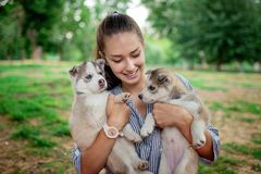A beautiful smiling woman with a ponytail and wearing a striped shirt is cuddling with two sweet husky puppies while royalty free stock images