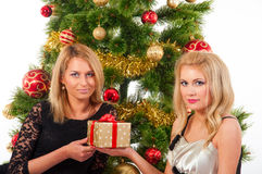 Beautiful  smiling women and the Christmas tree. Stock Photo