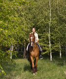 Beautiful smiling girl riding a brown horse through woodland Stock Photos