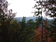 Beautiful Smokey Mountains in the fall. Stock Photos