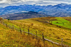 Beautiful snow-capped Carpathian Mountains in late autumn Royalty Free Stock Photography