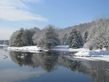 Beautiful Snow Covered Trees Around the Lake Royalty Free Stock Images
