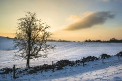 Beautiful snow covered Winter landscape at sunrise in Peak Distr. Snow covered Winter landscape at sunrise in Peak District in England Royalty Free Stock Images